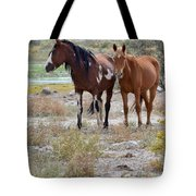 Stallion And Mare Tote Bag