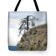 Stalwart Pine Tree Tote Bag