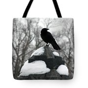 Crow Stance On Cold Stone Tote Bag