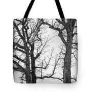 Stand Alones Tote Bag