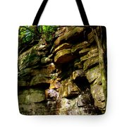 Stand In Amazement Tote Bag
