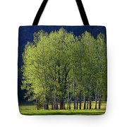 Stand Of Trees Yosemite Valley Tote Bag