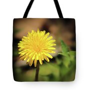 Stand Out - Dandelion Tote Bag