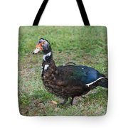 Standing Duck Tote Bag