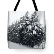 Standing Guard In Snow Tote Bag