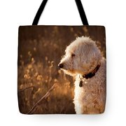 Standing In New Mexico's Golden Grass Tote Bag