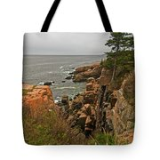 Standing On The Edge Tote Bag