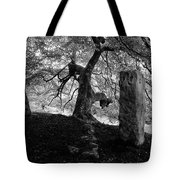 Standing Stones Near The Tree Tote Bag
