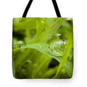Standstill Drop Tote Bag