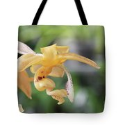 Stanhopea Orchid Tote Bag