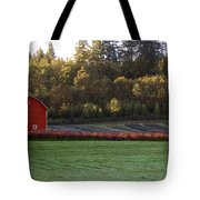 Star Barn Tote Bag