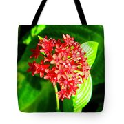 Star Cluster Tote Bag