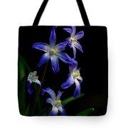 Star Flower Tote Bag