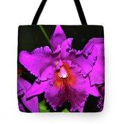 Star Of Bethlehem Orchid 006 Tote Bag