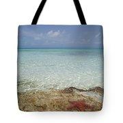 Star Paradise Tote Bag