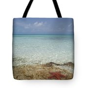Star Paradise Tote Bag
