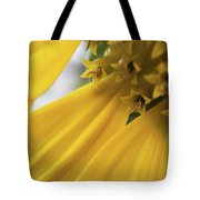 Star Tails Tote Bag