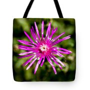 Starburst Of The Wildflowers Tote Bag