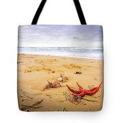 Starfish Tote Bag by Gary Gillette