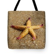 Starfish Tote Bag by Mamie Thornbrue