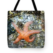 Starfish Running Tote Bag