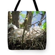 Staring From Its Nest Tote Bag