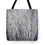 Stark Winter Tote Bag