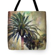 Starry Evening In St. Augustine Tote Bag