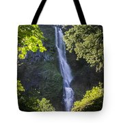 Starvation Creek Falls Tote Bag