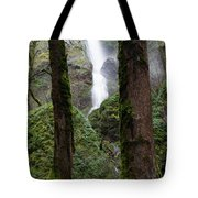 Starvation Creek Falls Between The Trees Tote Bag
