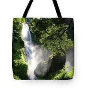 Starvation Creek Falls In September  Tote Bag