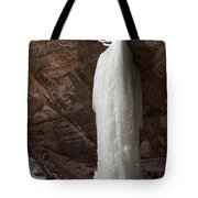 Starved Rock Icefall Tote Bag
