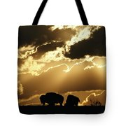 Stately American Bison Tote Bag