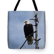 Stately Eagle Tote Bag