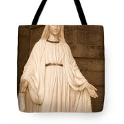 Statue Of Mary At Sacred Heart In Tampa Tote Bag