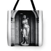 Statue Under Cover Tote Bag