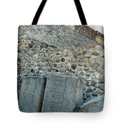 Statues Of Danzantes Tote Bag