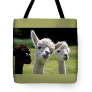 Stealing The Limelight Tote Bag