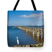 Steamboat Landing Ot Melbourne Beach In Florida  Tote Bag
