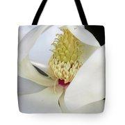 Steel Magnolia 43 Tote Bag