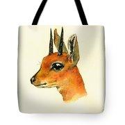 Steenbok Tote Bag