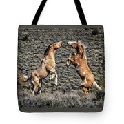 Steens Drama Tote Bag