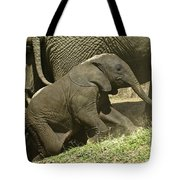 Steep Climb For A Little Guy Tote Bag