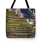 Steep Slope Viticulture In Valais Canton Tote Bag