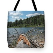 Steepbanks Lake The Fallen Tote Bag