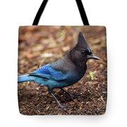 Stellar's Jay II Tote Bag