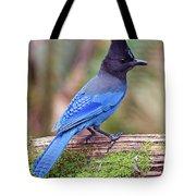 Steller's Jay IIi Tote Bag