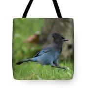 Steller's Jay Landing Tote Bag