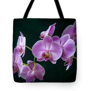Stem Of Orchids  Tote Bag