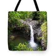 Step Falls Pipiwail Trail 3 Tote Bag